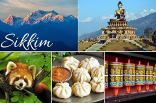 Sikkim Collage