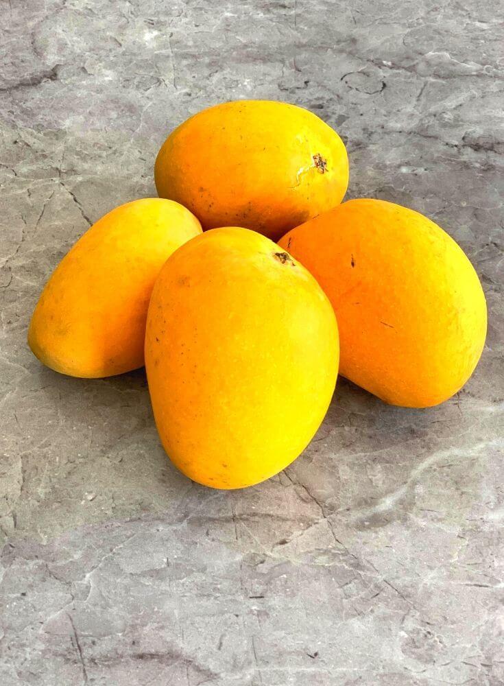 Ripe Alphonso Mangoes